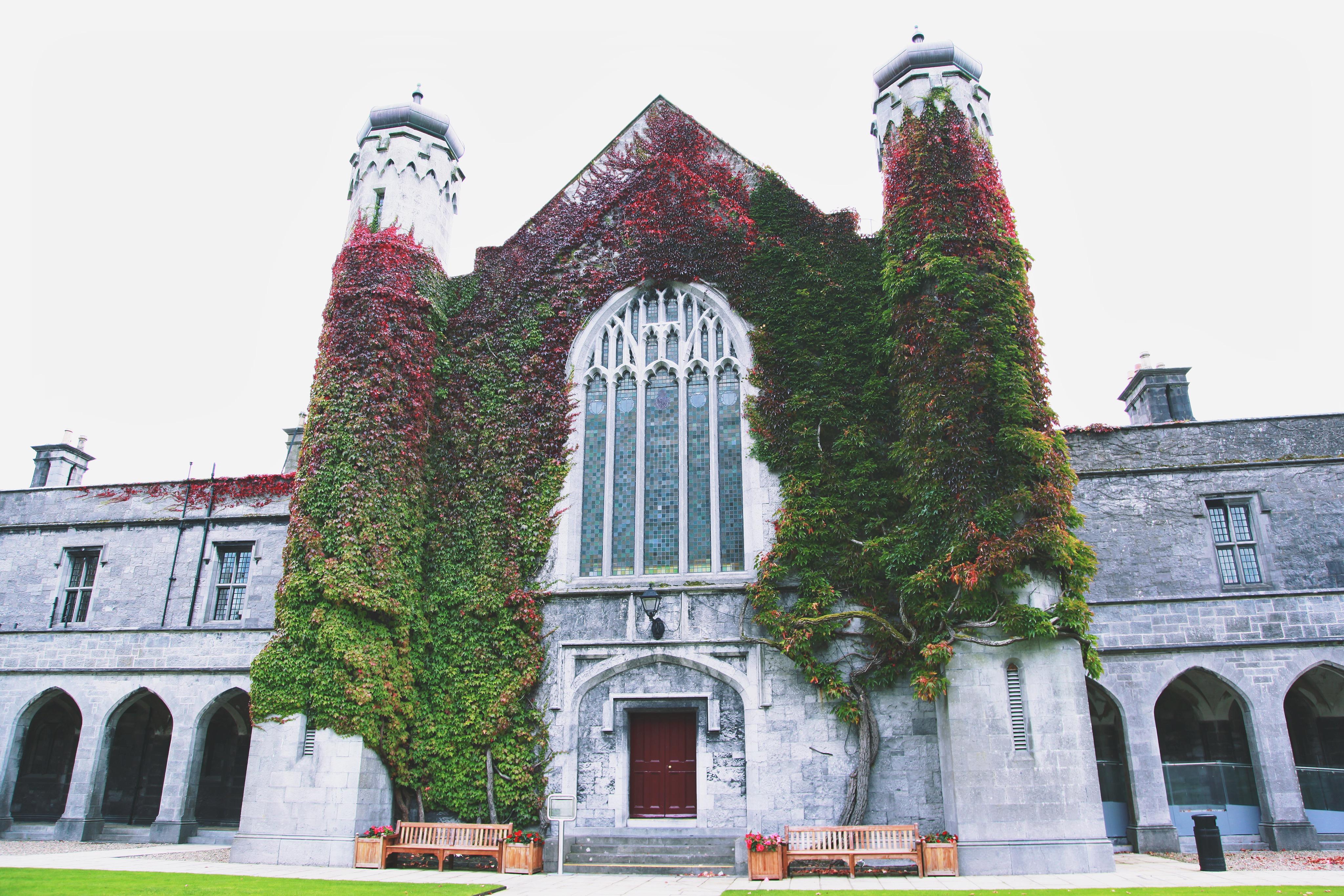 Ireland College