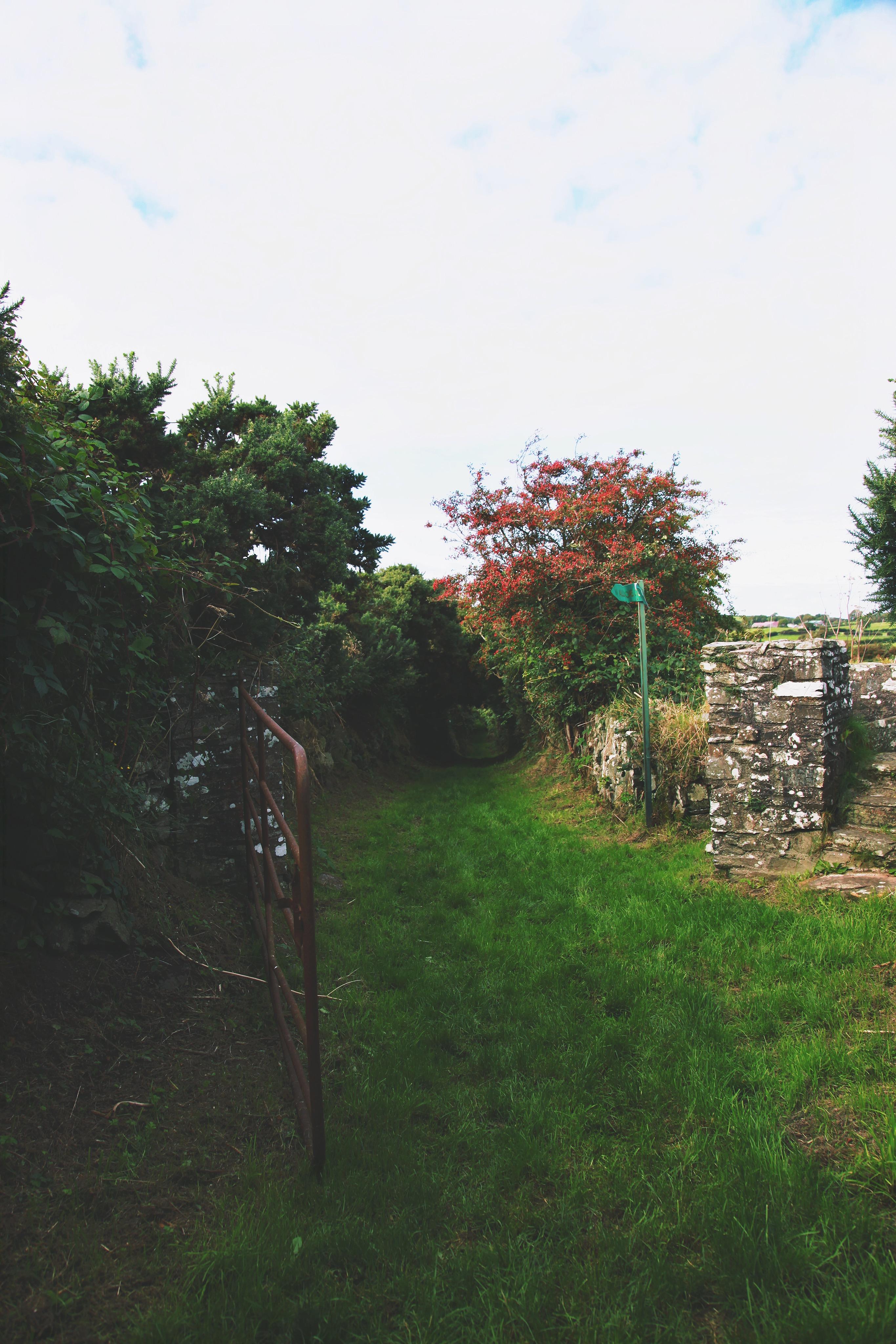 img_6328